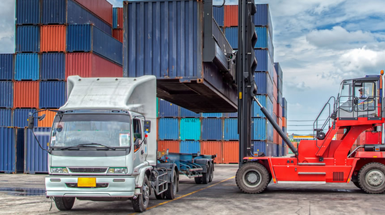 establish a logistics business in India