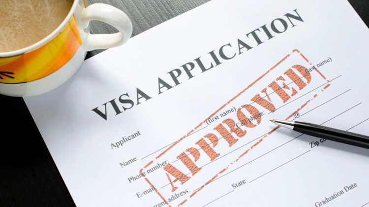 Indian Employment Visa